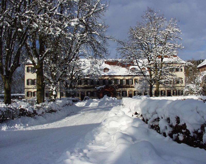 Das Schloss im Winter